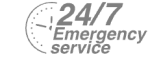 24/7 Emergency Service Pest Control in Feltham, Hanworth, TW13. Call Now! 020 8166 9746